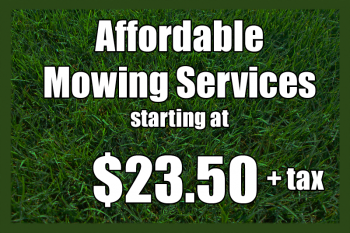 affordable mowing services - lawn care maintenance